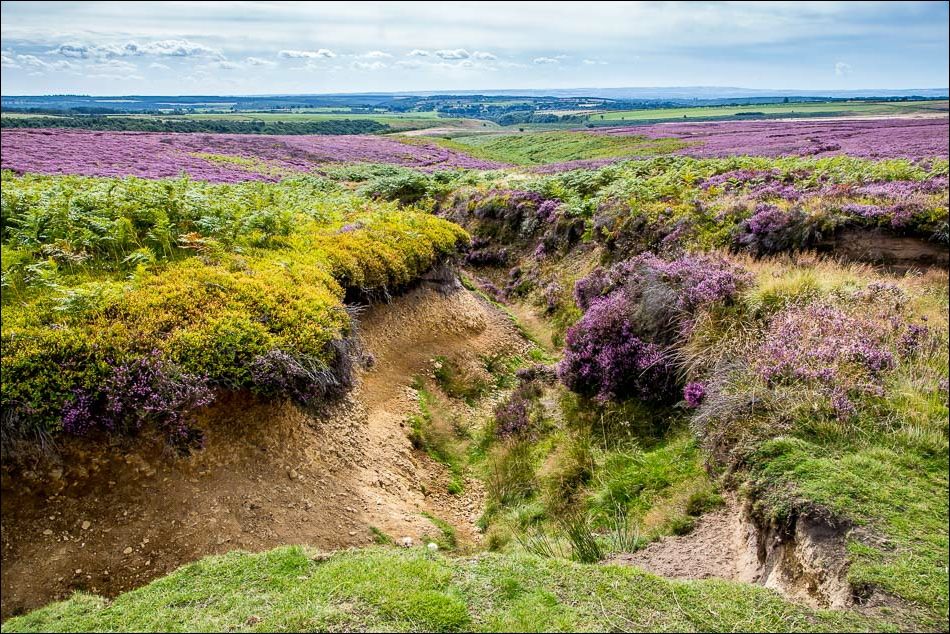 Levisham Moor, Horness Griff
