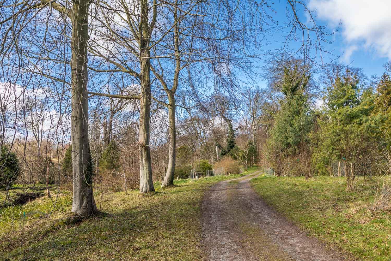 Howick Hall East Arboretum