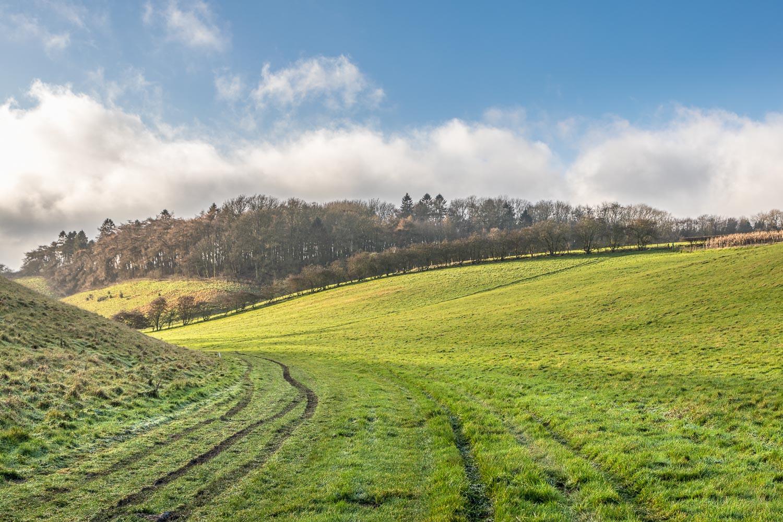 Rabbit Dale, Yorkshire Wolds walk