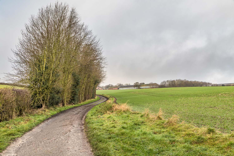 Huggate walk, Wolds Way
