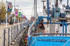 Hull Fish Trail