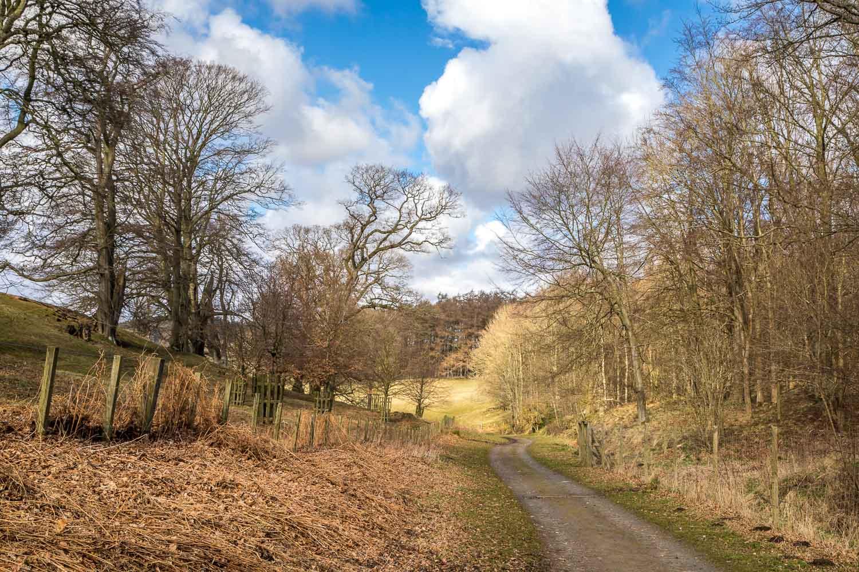 Hulne Park walk, Alnwick walk