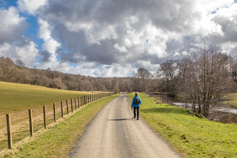 Hulne Park walk, River Aln