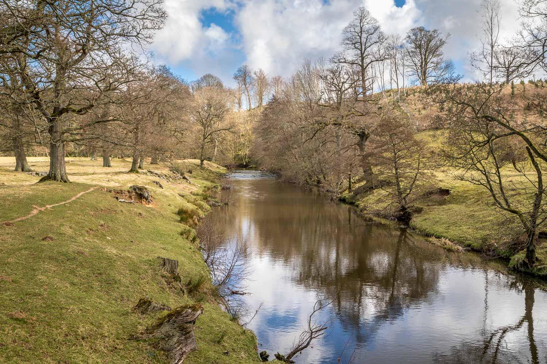 Hulne Park, River Aln