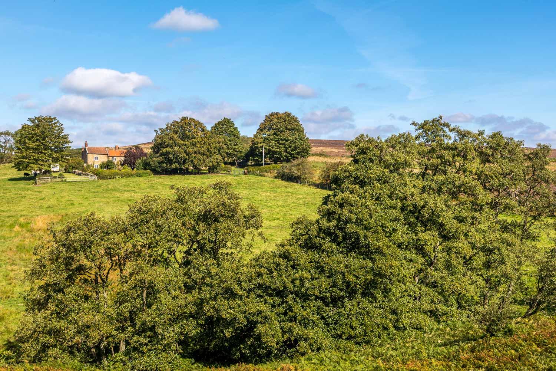Hutton-le-Hole walk, Bainwood Head