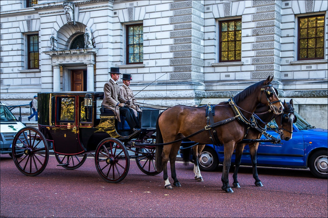Jubilee Walkway, Horse Guards road