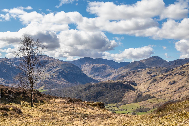 Borrowdale view