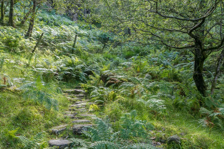 King's How walk, Borrowdale