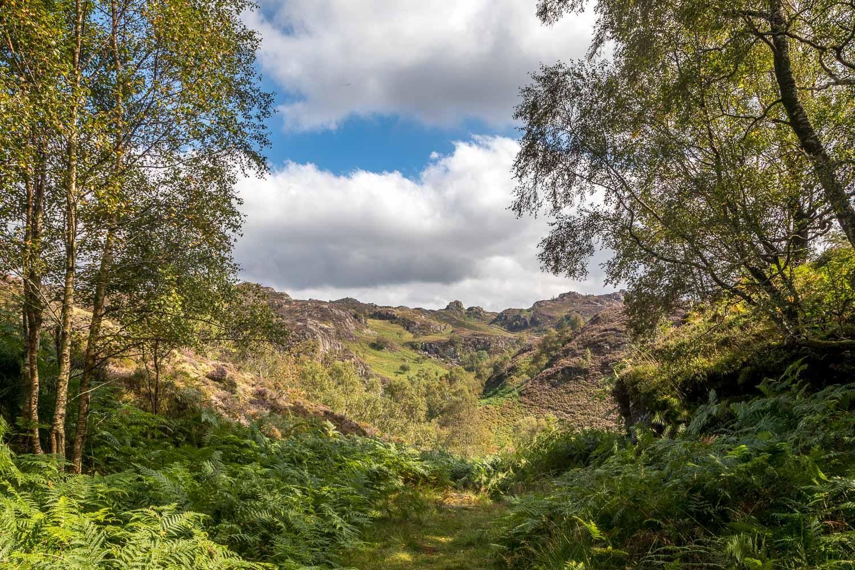 King's How walk, Borrowdale, Jopplety How, Brund Fell
