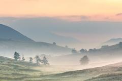 Dawn, Newlands Valley