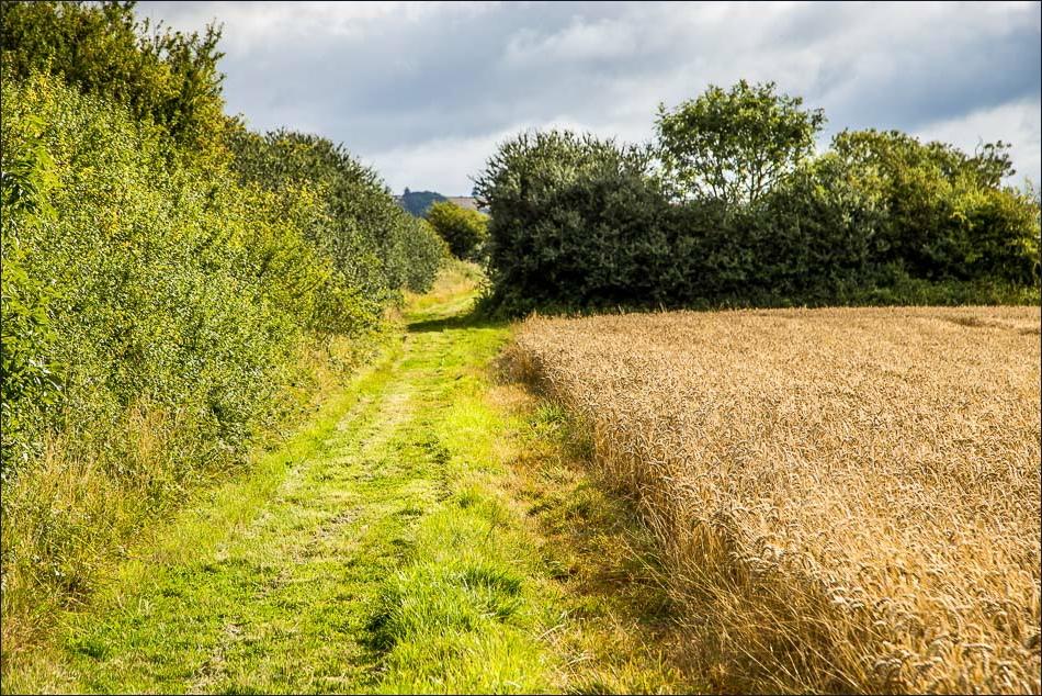 Kirby Underdale walk