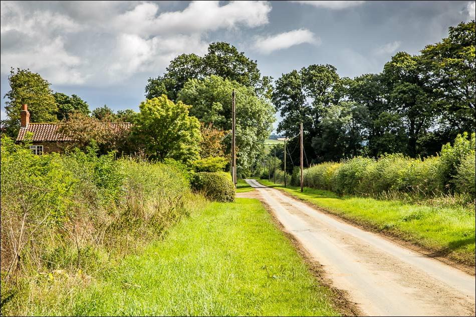 Kirby Underdale walk, Bugthorpe Lane