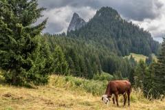Mont Chauffe from Col de la Plagne