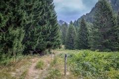 Chablais Alps walk