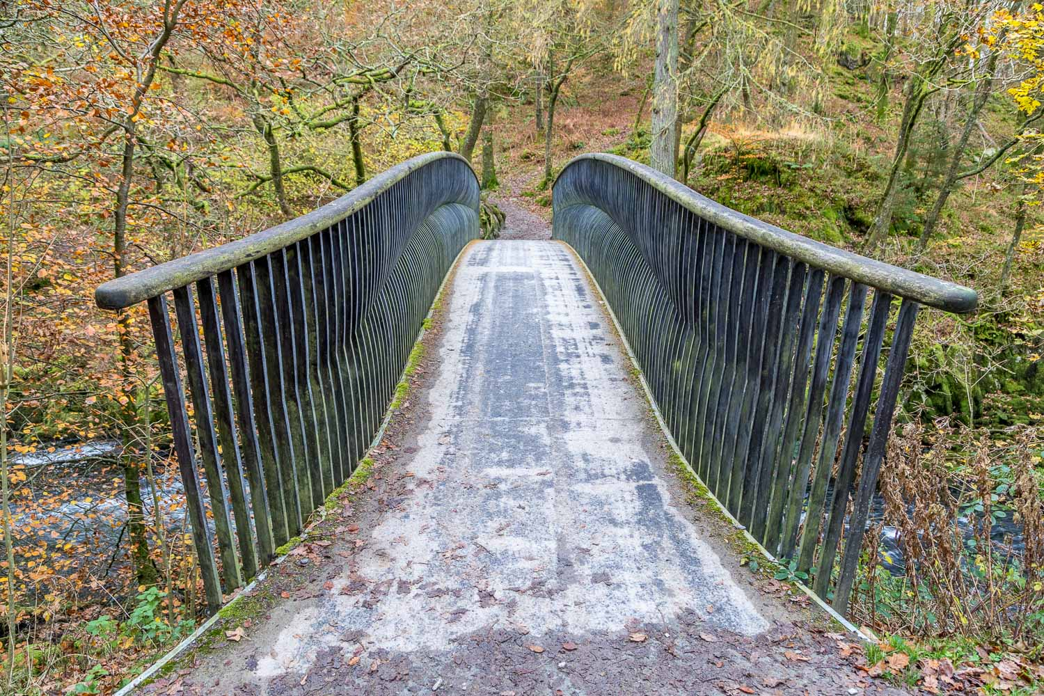 Langdale walk, Trevor Woodburn bridge