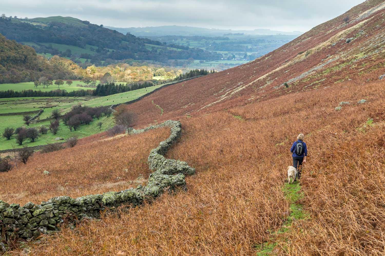 Lanthwaite Hill walk