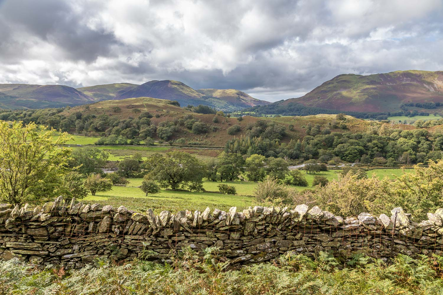 Loweswater Fells, Lanthwaite Hill