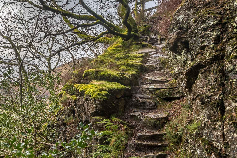 Lanthwaite Hill walk, Brackenthwaite Hows walk
