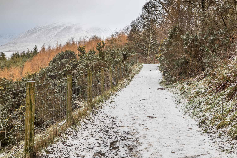 Latrigg, Cumbria Way