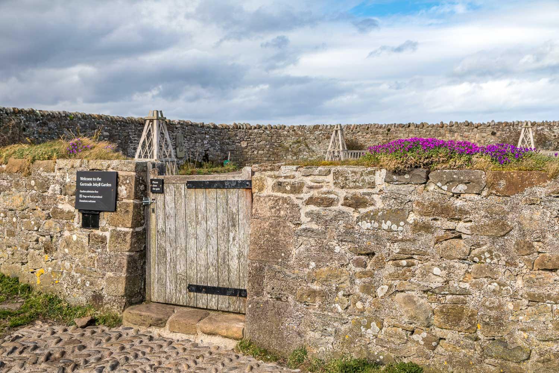 Gertrude Jekyll Garden, Lindisfarne