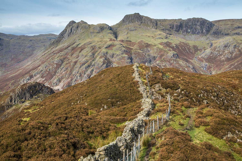 Lingmoor Fell walk, Langdale Pikes view