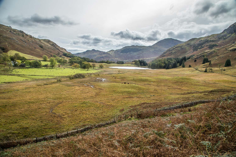 Lingmoor Fell walk, Blea Tarn