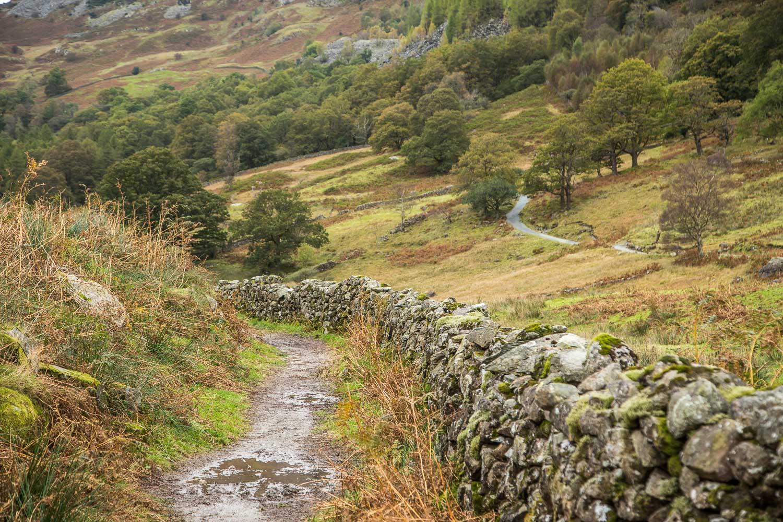 Lingmoor Fell walk, Cumbria Way