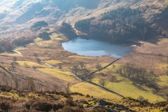 Lingmoor Fell, Blea Tarn