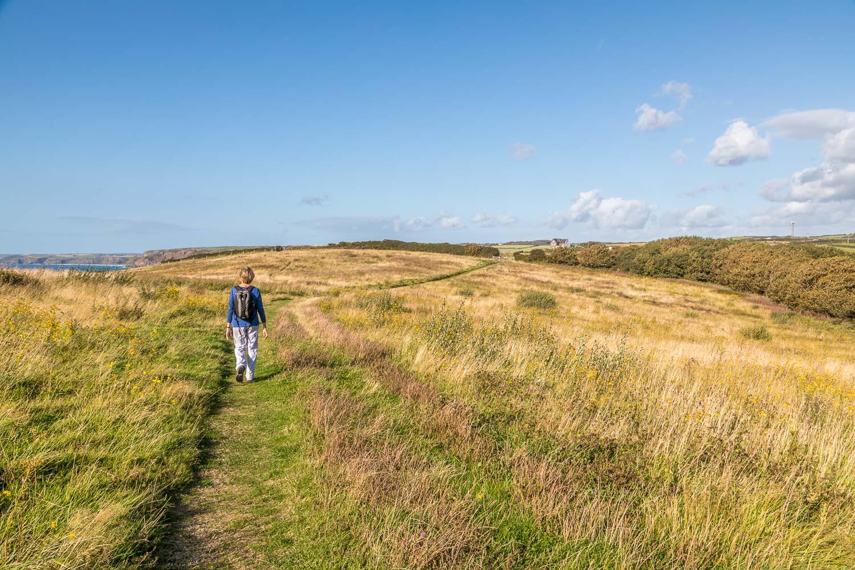 Little Haven walk, Pembrokeshire
