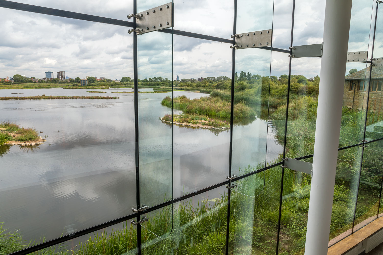 London Wetlands-14