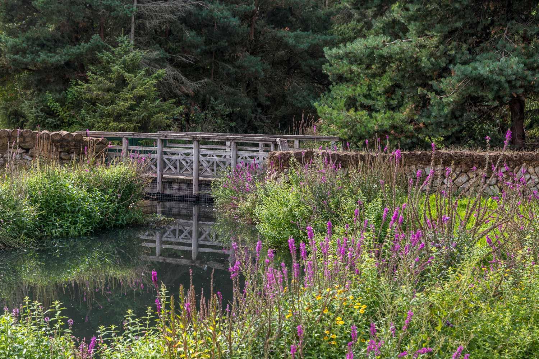 London Wetlands-23