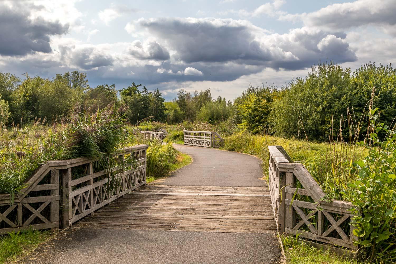 London Wetlands-38