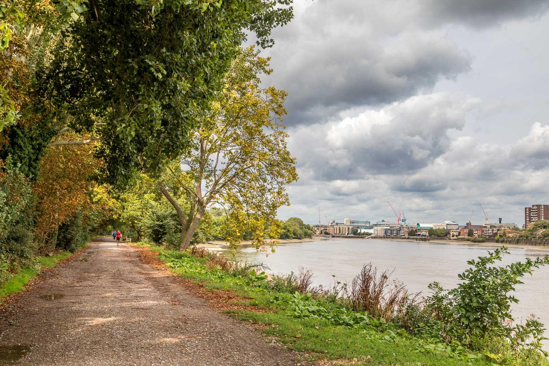 London Wetlands-5