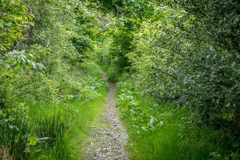 path to High Swinside
