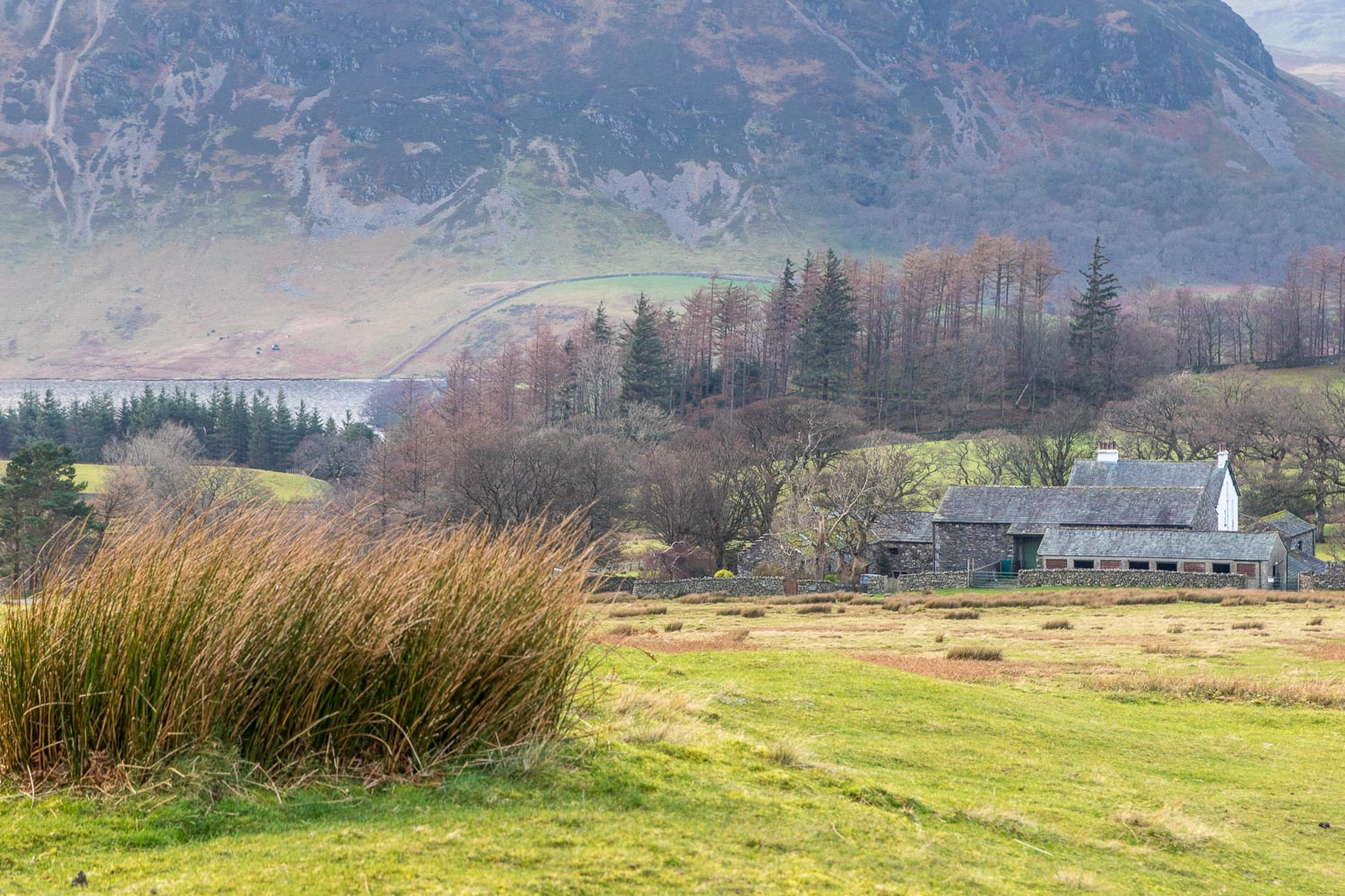 Lanthwaite Green Farm