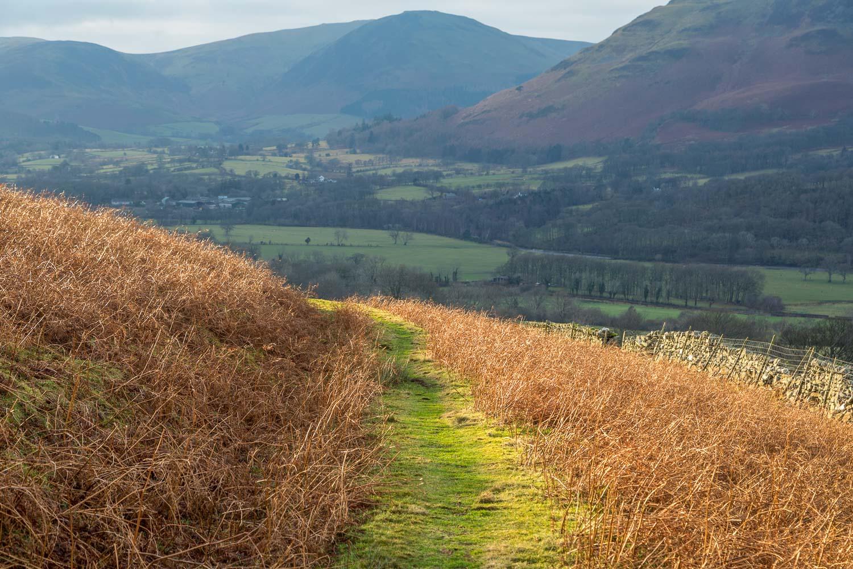 Lorton Vale walk