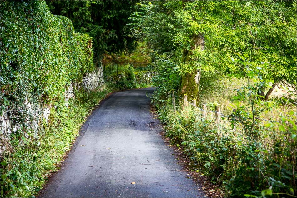 lane between Rydal and Ambleside