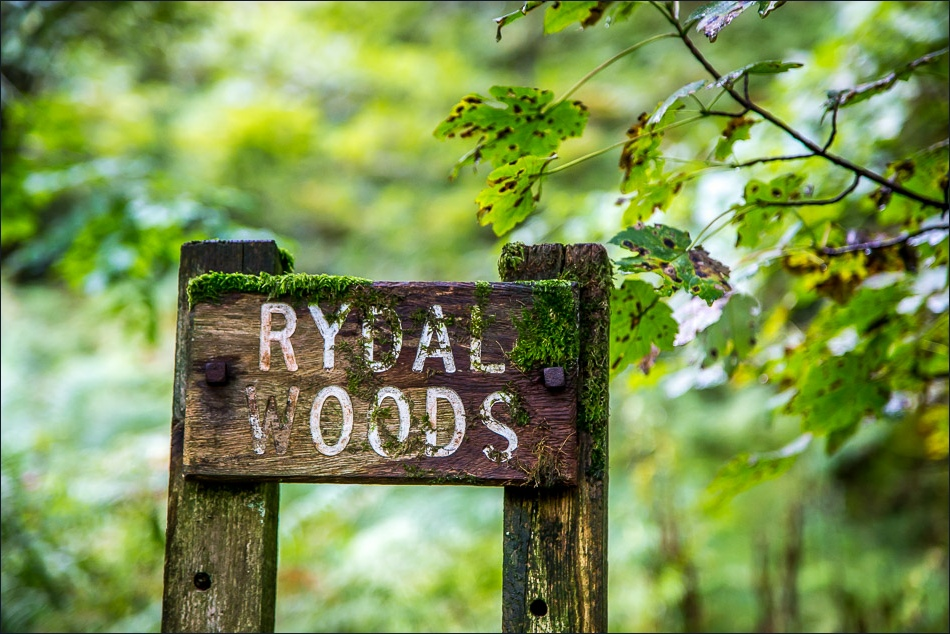 Rydal Woods sign