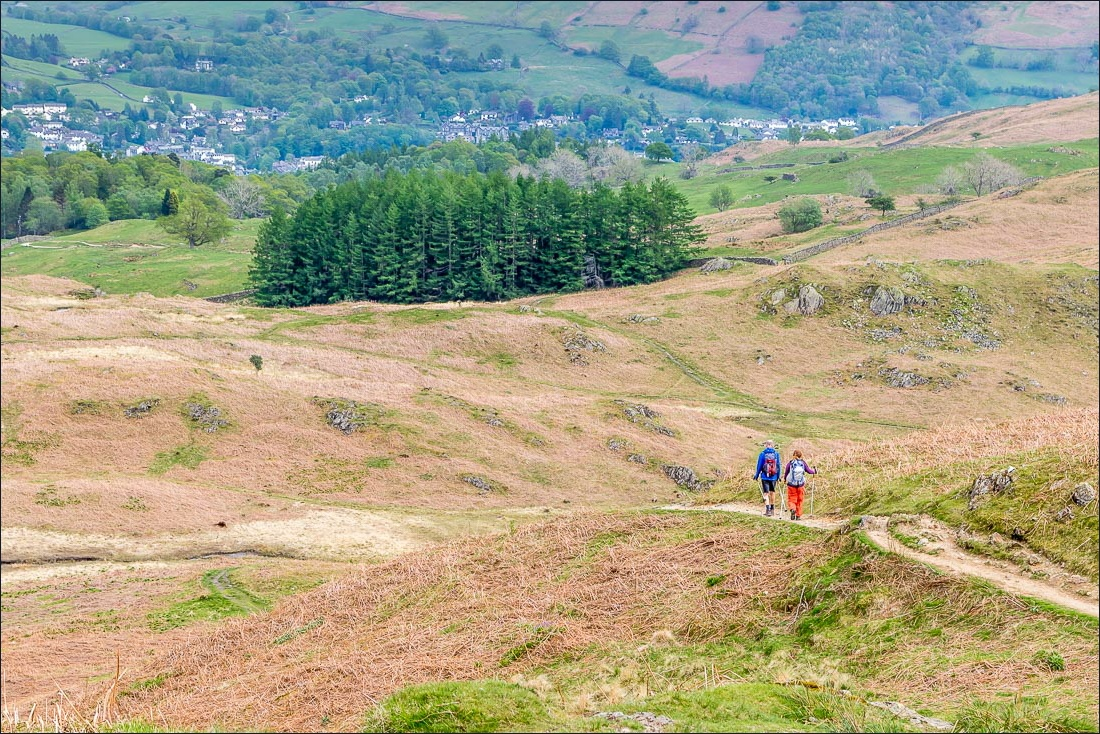 Ambleside from  Loughrigg Fell