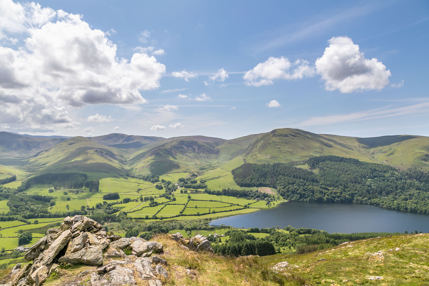 Low Fell view, Loweswater, Holme Wood