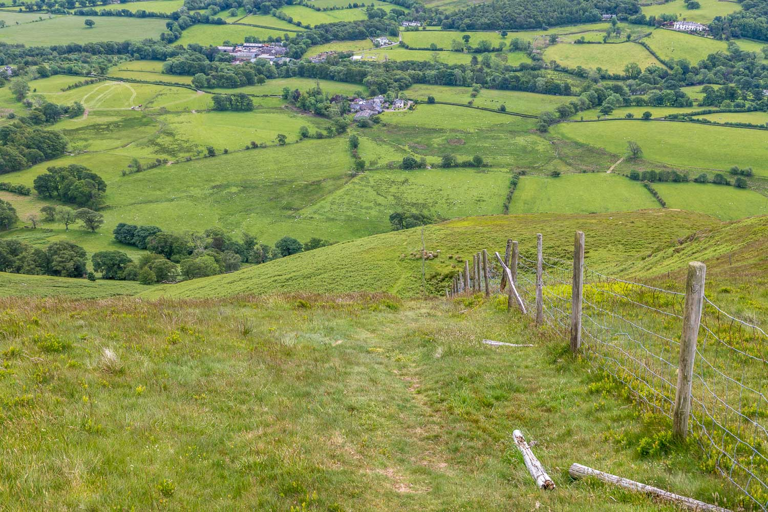 Low Fell walk