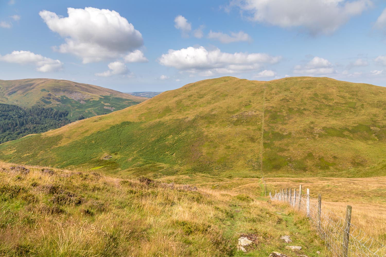 Low Fell walk, Darling Fell