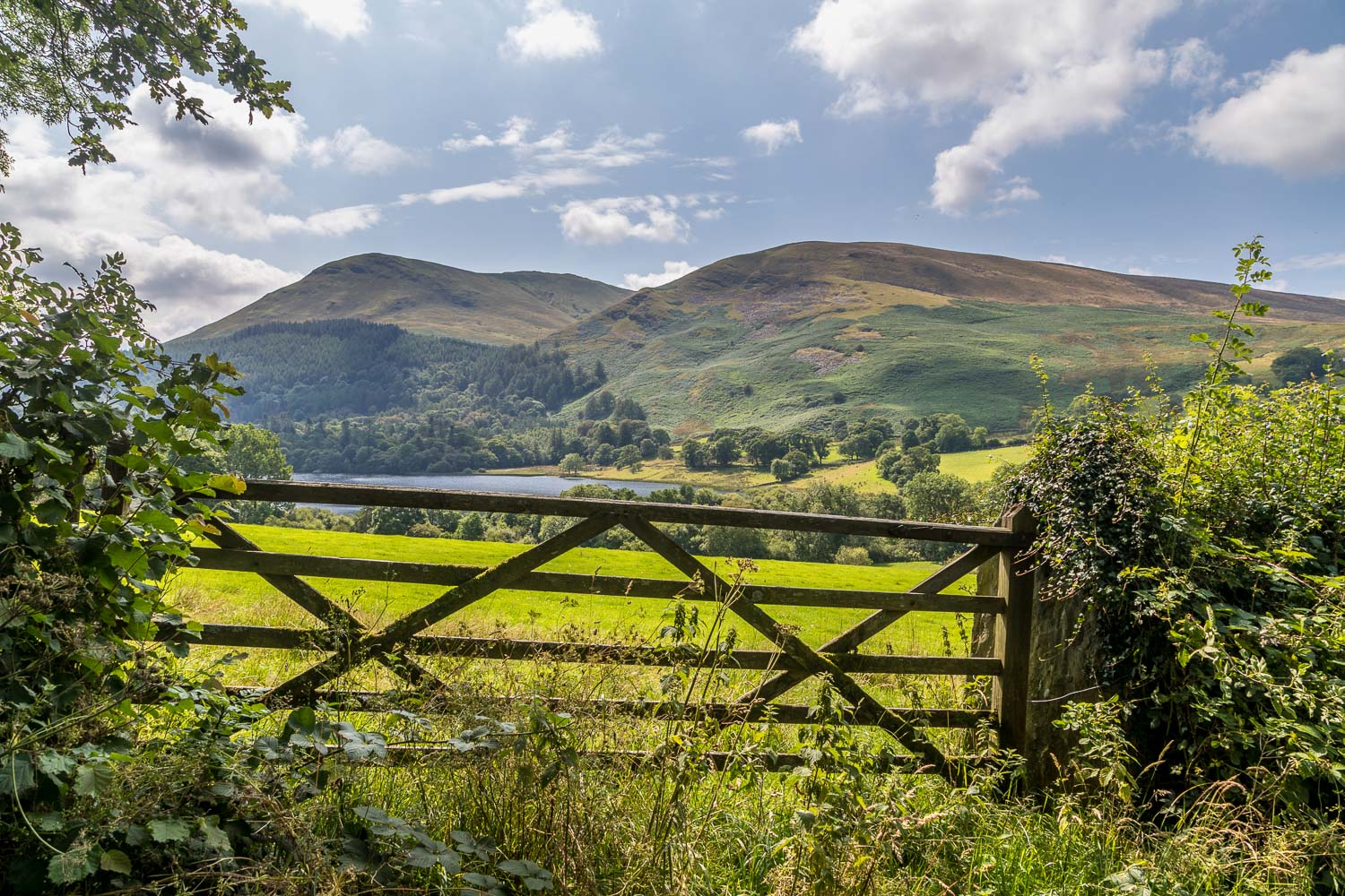 Loweswater walk, Burnbank Fell, Carling Knott