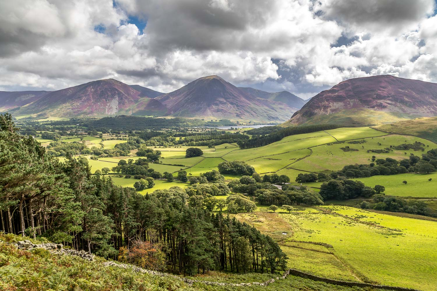 Loweswater20-20
