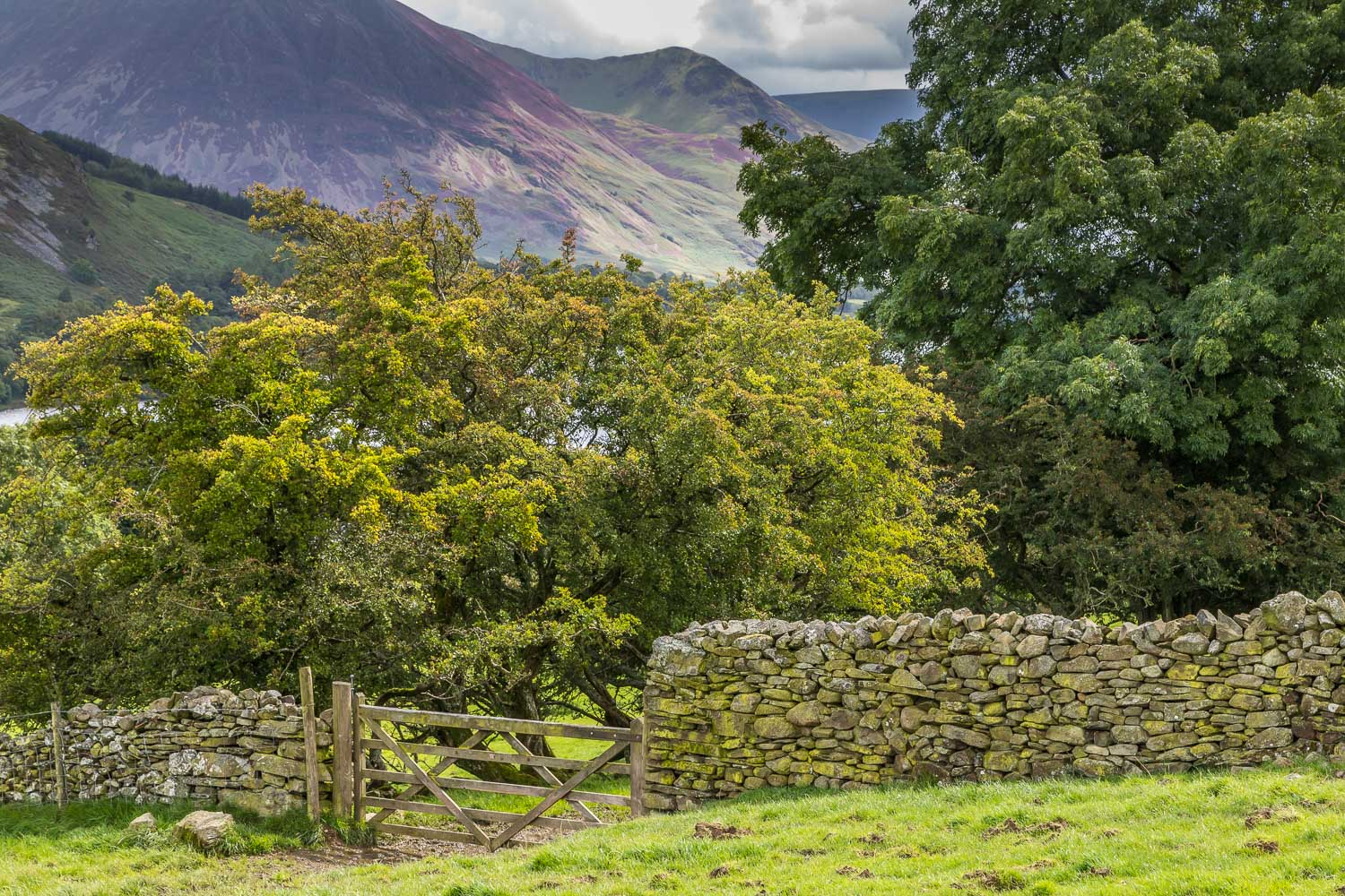 Loweswater20-45