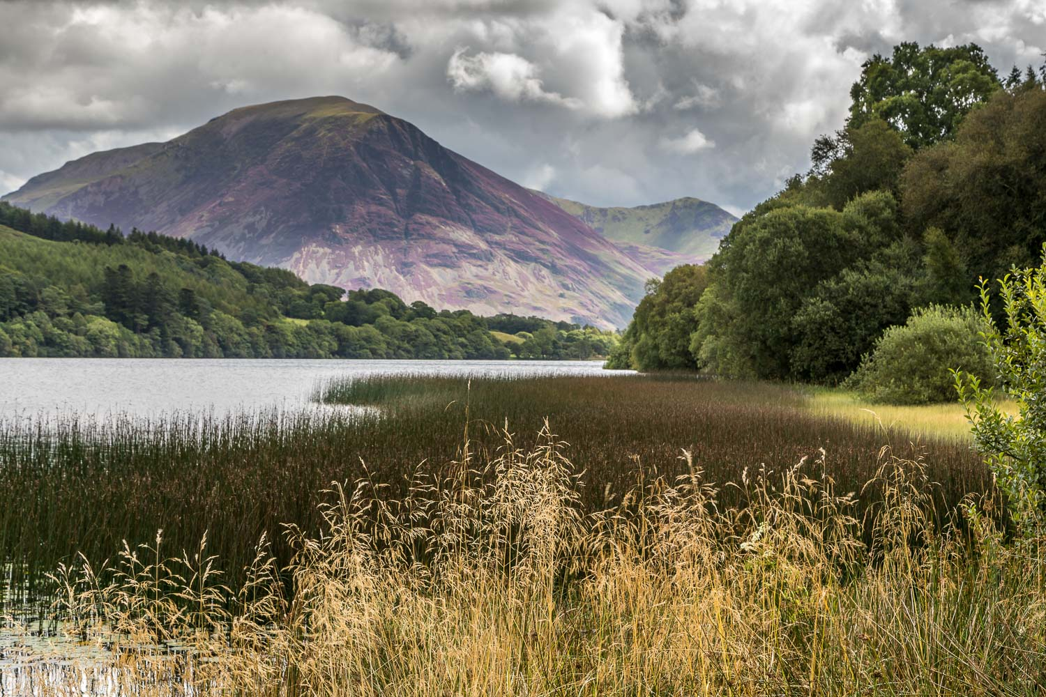 Loweswater20-53