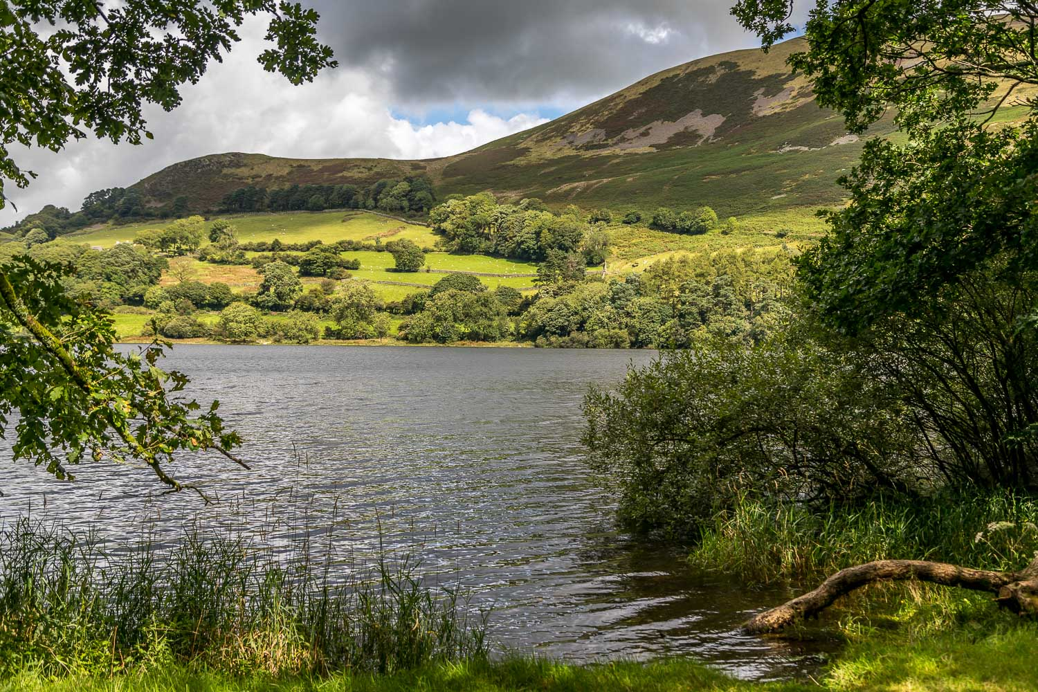 Loweswater20-57