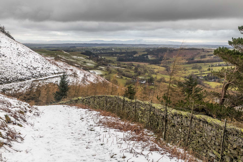 Path above Holme Wood