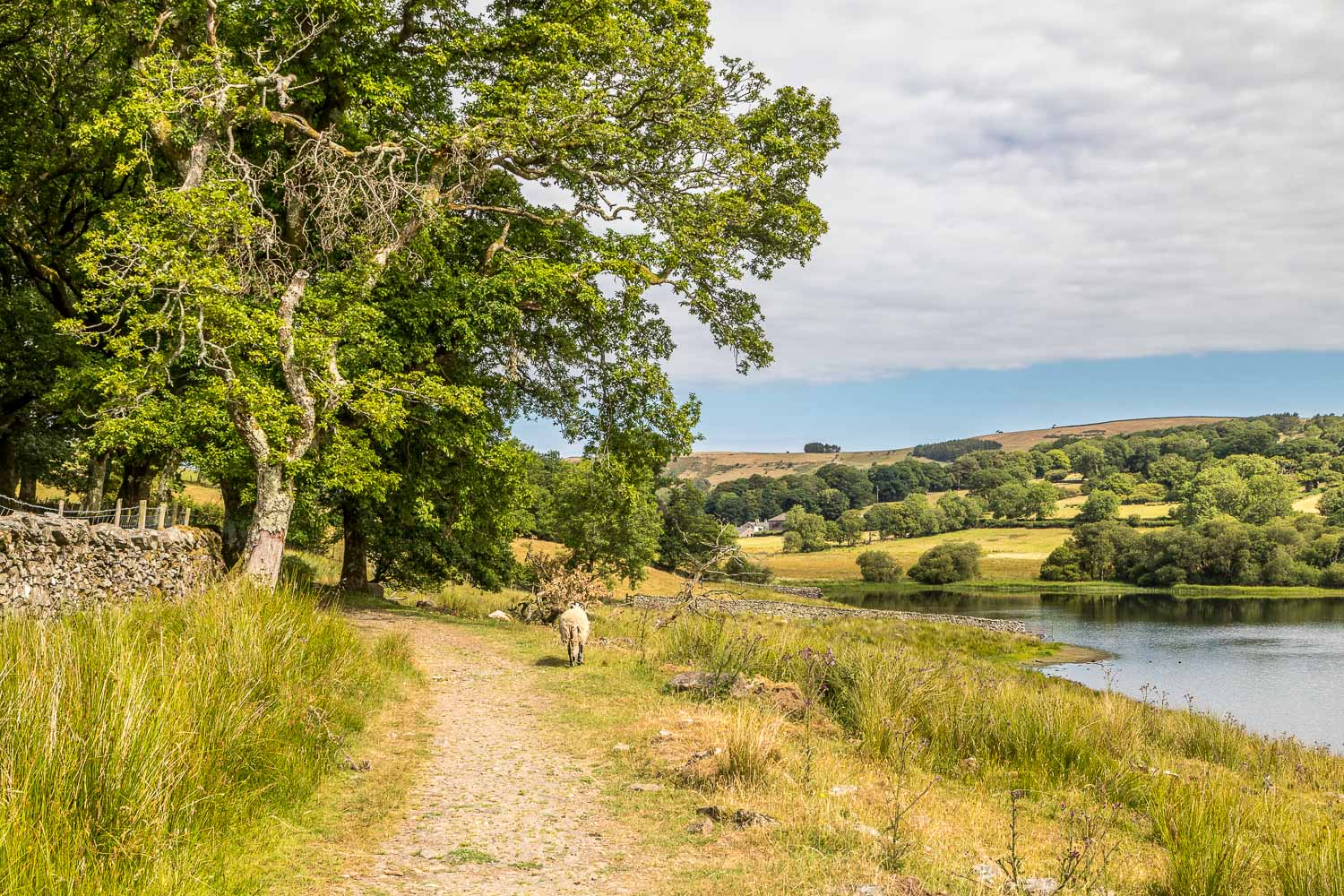 Loweswater-23-22