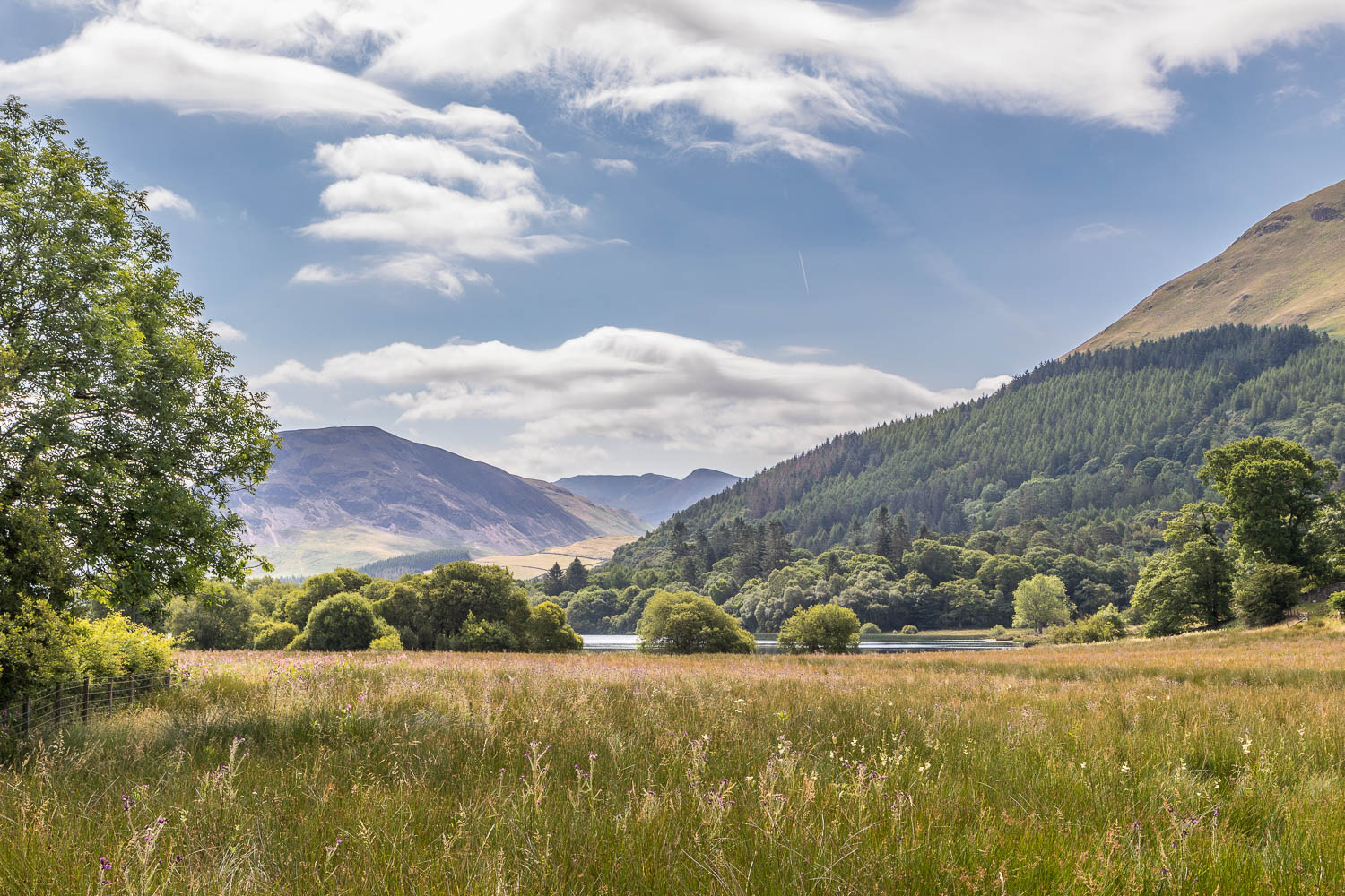 Loweswater-23-33